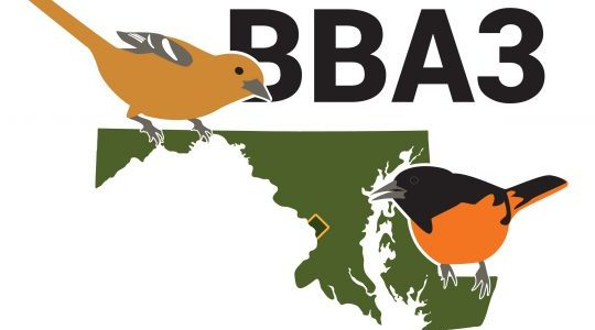 Citizen Science: Breeding Bird Atlas Presentation