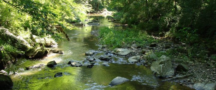 9/22/21 – Middle Patuxent Environmental Area Presentation